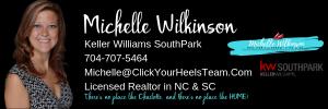 Michelle Wilkinson email banner